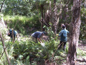 greencorpstroops1stday.jpg