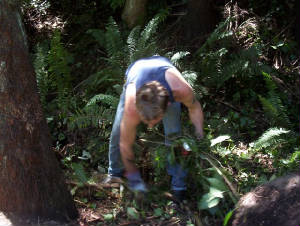 Rob Colenso Working